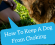 How To Keep A Dog From Choking