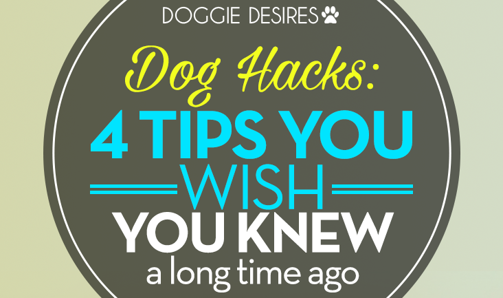 dog hacks