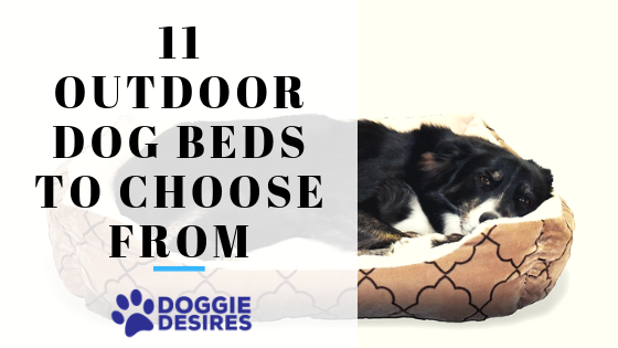 11 Outdoor Dog Beds To Choose From
