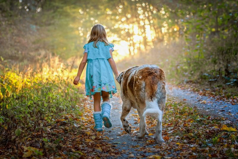 girl walking her dog learning to be responsible as a benefit of owning a pet