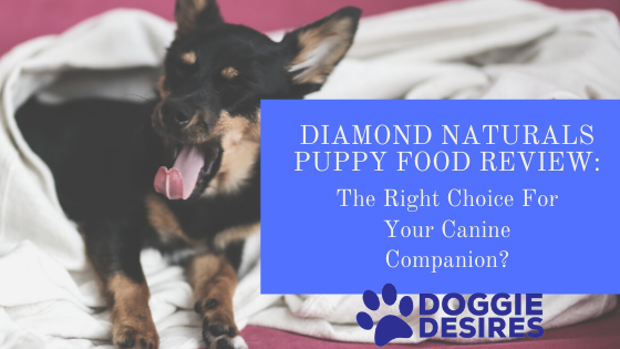 Diamond Naturals Puppy Food Review